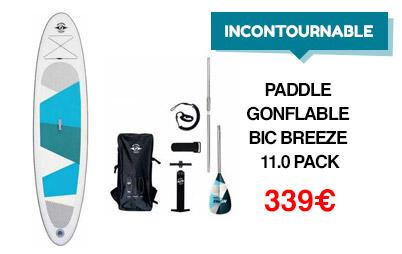 Paddle BIC