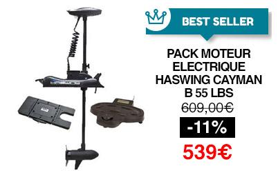 moteur électrique haswing cayman