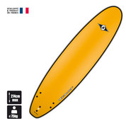 SURF BIC ORIGINAL G-BOARD EVO